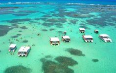 Vista aérea das piscinas naturais de Maragogi