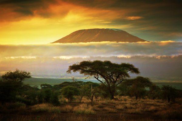 Amanhecer das savanas na base do Kilimanjaro