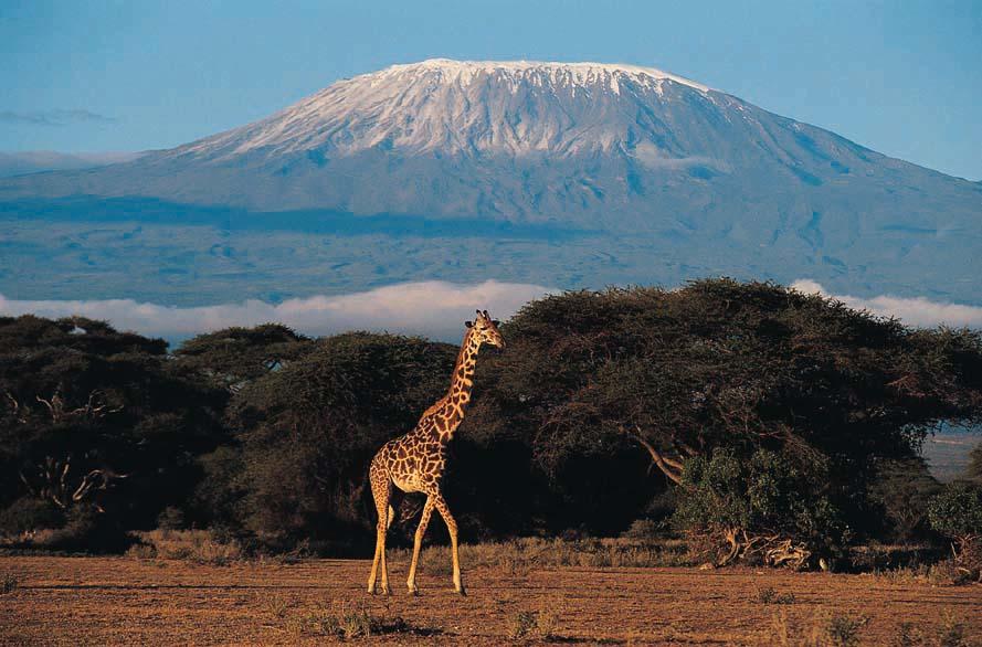 O imponente Kilimanjaro visto das savanas
