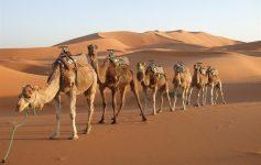 Marrocos é um destino que vai marcar para sempre suas memórias