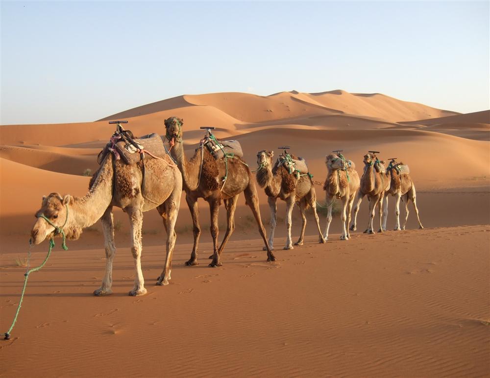 Turismo em Marrocos, o que você vai encontrar por lá