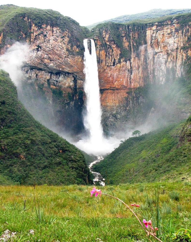 Parques Nacionais cover image