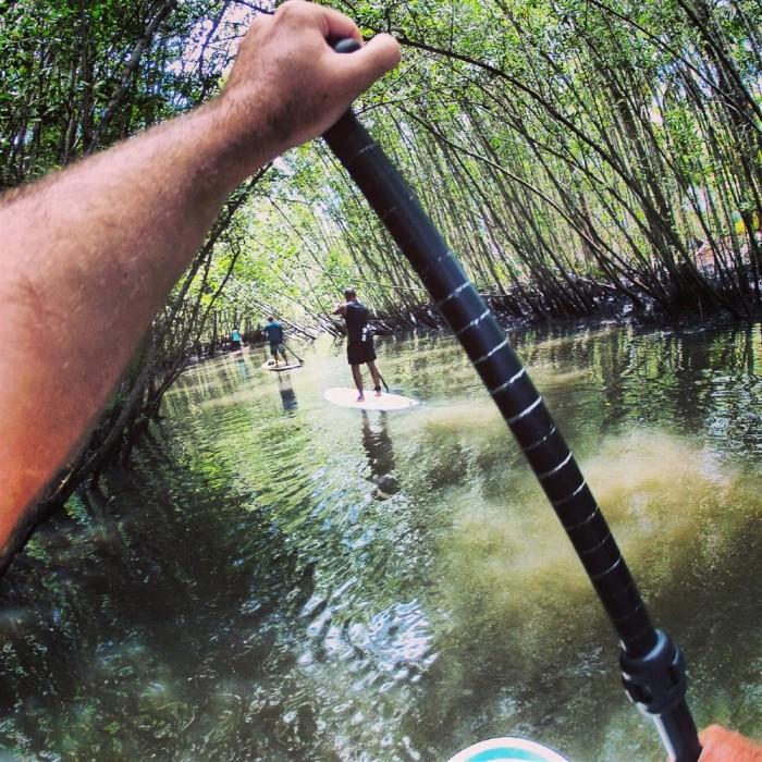 SUP em um manguezal em Itacaré