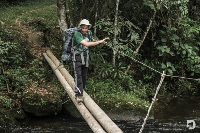 Ponte de Troncos - Cachoeira do Veado