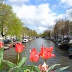 Amsterdam por Diana Schrok