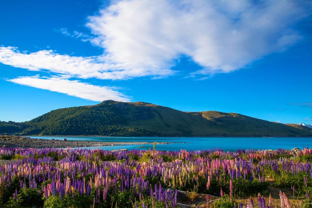 Lago Tekapo Na Nova Zel 226 Ndia Est 225 Ainda Mais Colorida Com