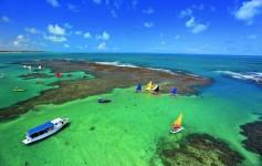 Próximas à costa, as piscinas naturais estão repletas de peixes coloridos. Foto: Vinicius Lubambo