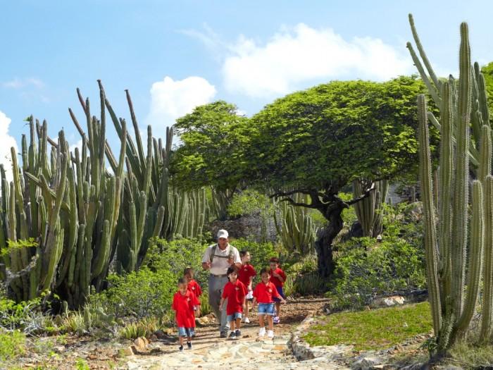 Aruba - Caminhada no Parque Arikok com guia