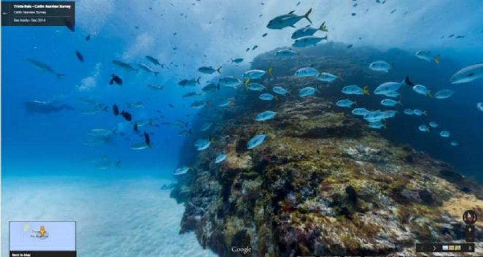 Mergulho virtual em Fernando de Noronha
