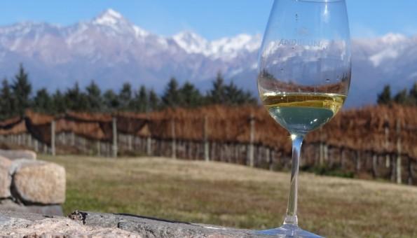 Vinicolas do Chile