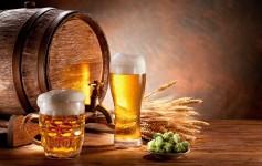 Lojas Online para comprar Cervejas Especiais no Brasil