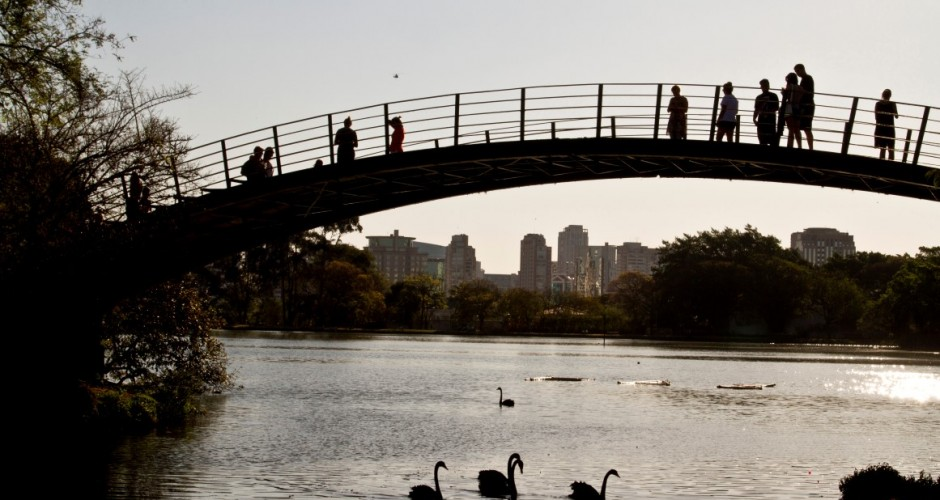 Parque Ibirapuera - São Paulo (SP) / Foto: Jose Cordeiro/SPTuris