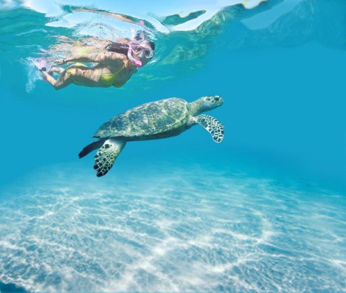 Mergulho em Tobago 2
