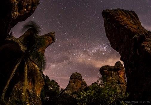 Passeio Noturno no PEVV - imagem cedida por Sergio Mendonça Jr.