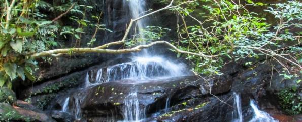 Parque Estadual da Pedra Branca - RJ