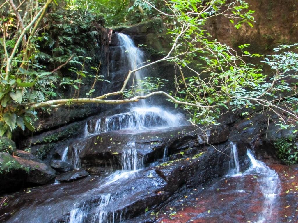 Principais Trilhas Do Parque Estadual Da Pedra Branca Rj