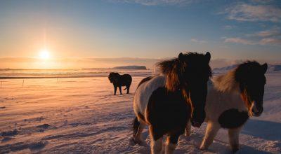 Expedição Fotográfica Islândia 2016