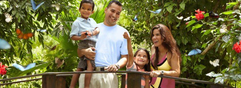 Aruba - Fazenda das Borboletas em Familia - Credito: ATA