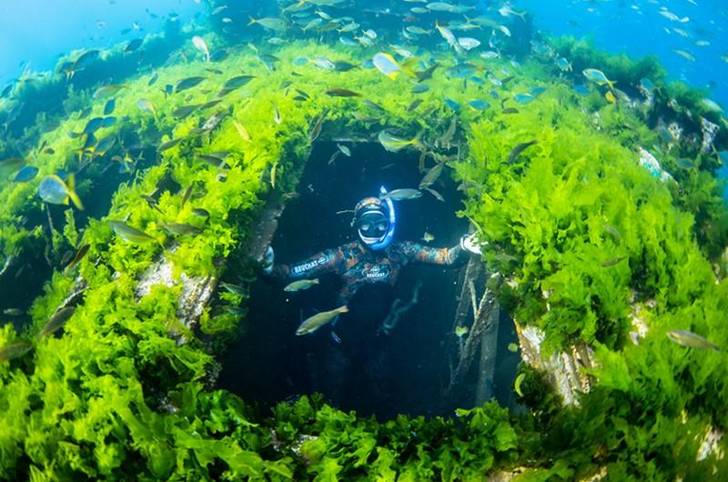 Ilha Robinson Crusoé 09
