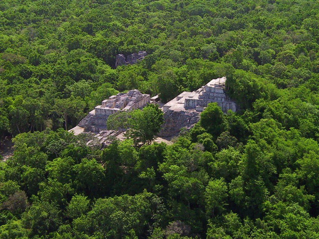 Zona arqueológica de Calakmul - Mexico
