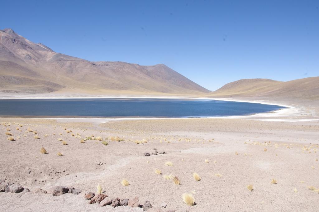 Laguna Miscanti Y Miñiques, não parece uma pintura?