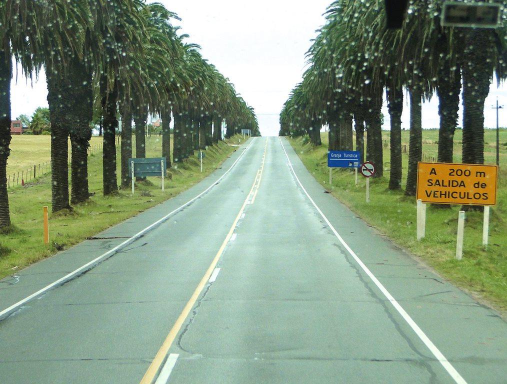 Rodovia Uruguaia próxima a Colonia