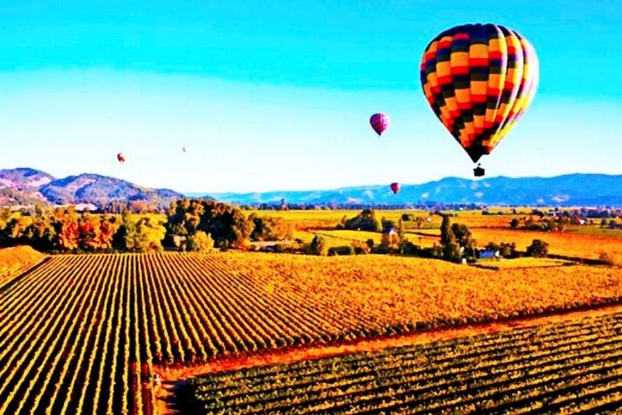 Passeios de balão em Napa Valley, EUA