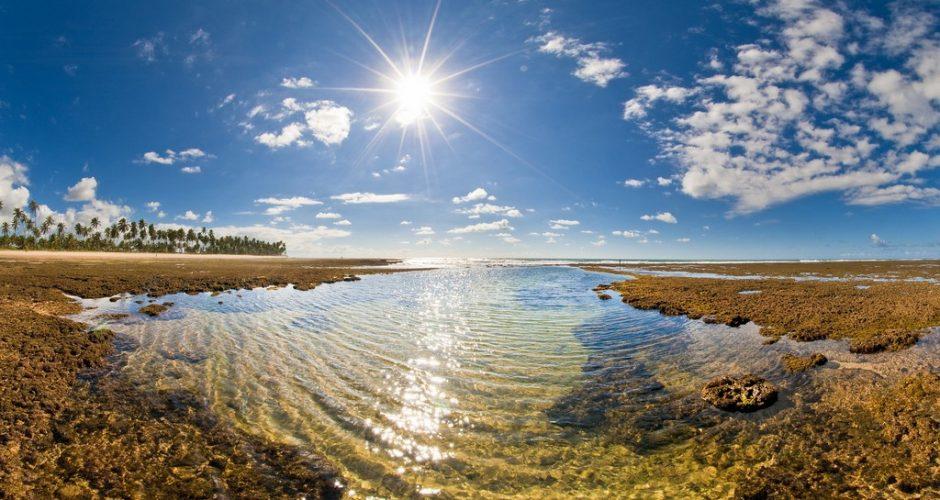 Você precisa conhecer a Praia do Forte, na Bahia