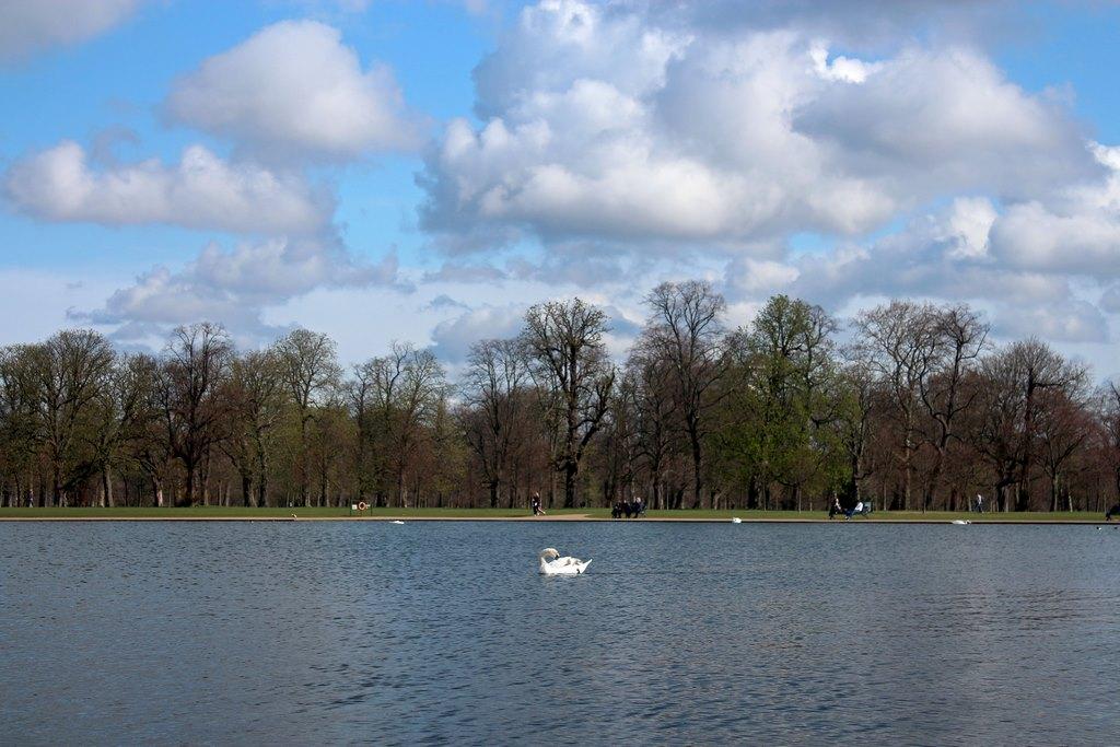 Quem disse que em Londres só fazem dias nublados? Dia lindo no Kesington Park