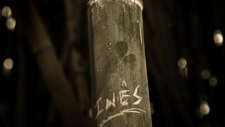 Nome de Inês gravado em um dos bambus da Quinta das Lágrimas_ Créditos Visit Centro
