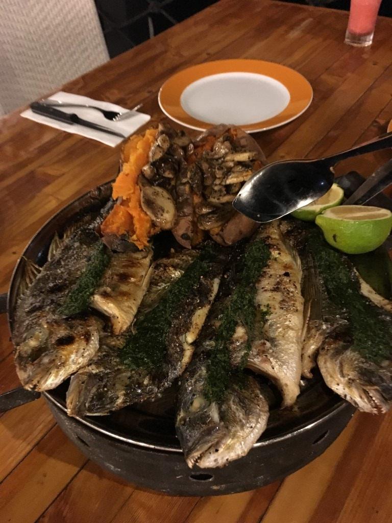 Peixe de São Pedro