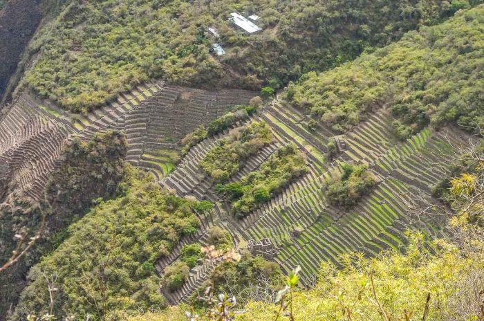 Choquequirao - Terraços agrícolas