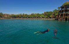O que fazer em Eilat - Israel
