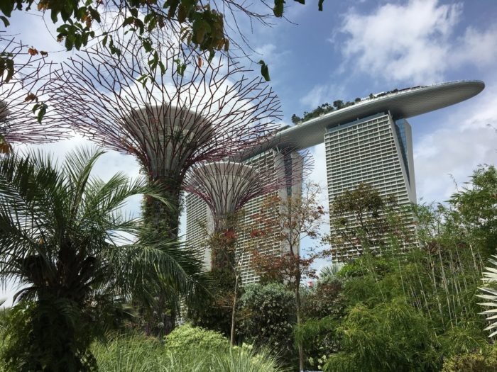 Singapura - Vista diurna dentro do Gardens By the Bay