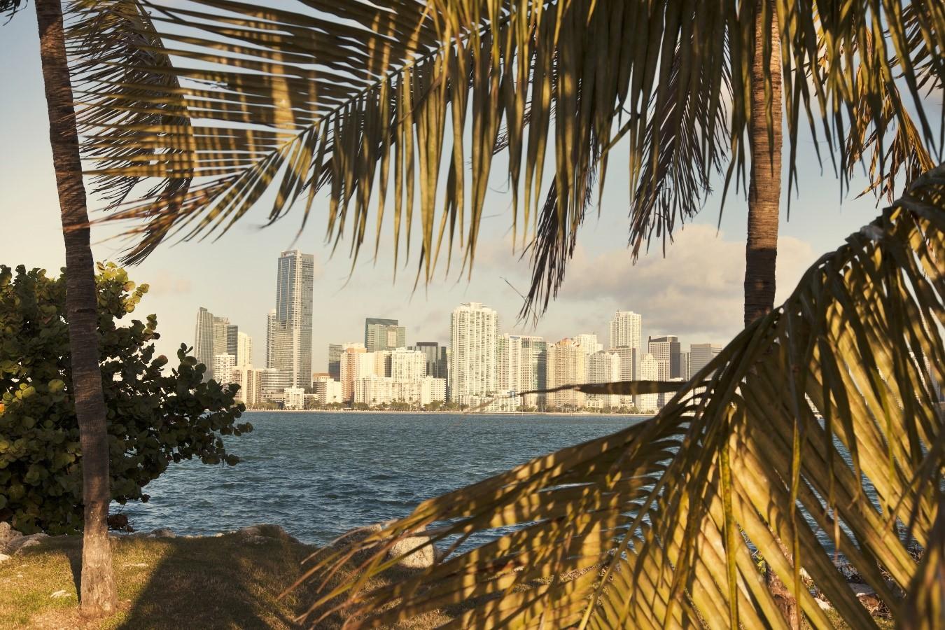 2dcd38d62ed44 5 paradas obrigatórias em Miami - Trilhas e Aventuras